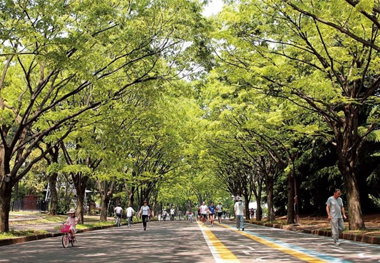 公園 駒沢